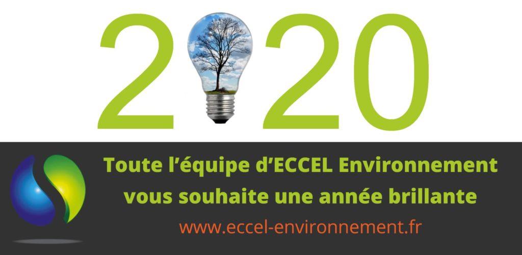 Vœux de bonne année ECCEL Environnement